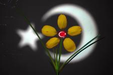 Ay-yıldız..