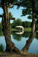 Çamlıca gölü